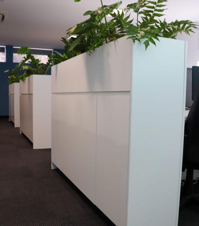 STP Office 4